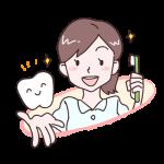 菌の住処は歯磨きでは取れない!PMTC(クリーニング)を定期的にすることの重要性
